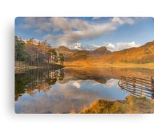 Blea Tarn Lake District Metal Print