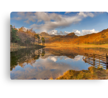 Blea Tarn Lake District Canvas Print