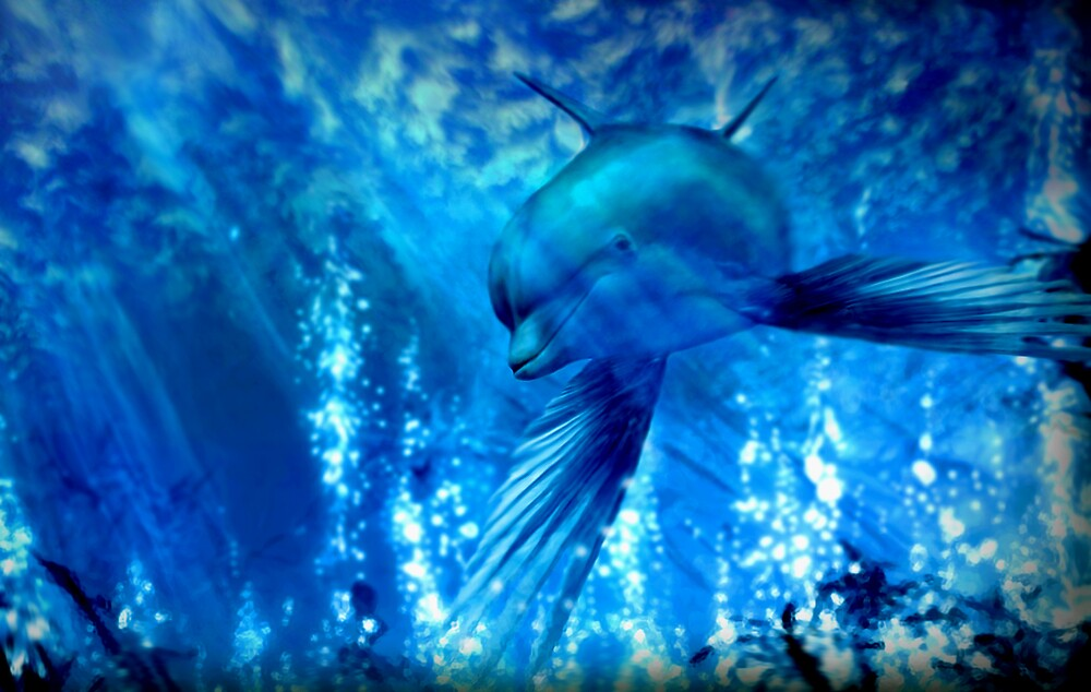 When Dolphins Fly by Cliff Vestergaard