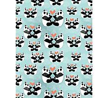 panda lovers Photographic Print