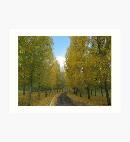 The Yellow Leaf Road Art Print