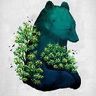 Nature's Embrace by Fil Gouvea