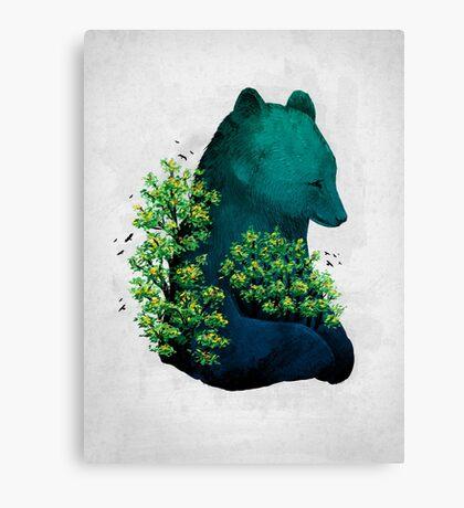 Nature's Embrace Canvas Print