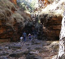 Walking Aligator Gorge Wilmington South Australia  by Linda Hitch