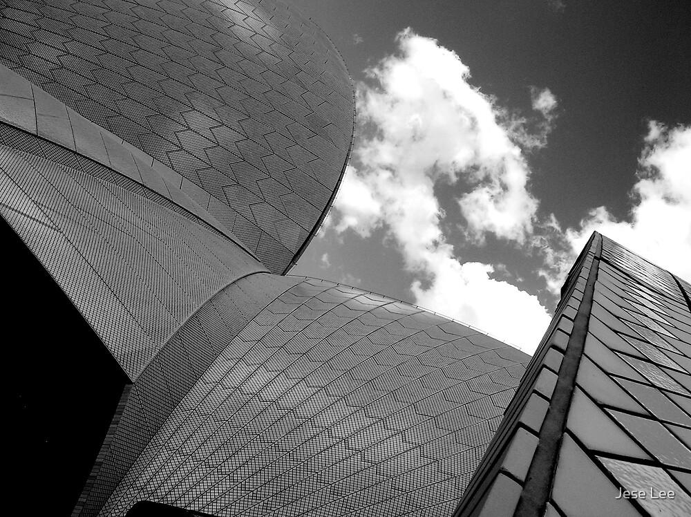 Sydney Opera House by Jese Lee