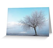 Wanaka Willow Greeting Card