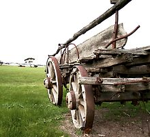 Cart Behind the Horse by Stephen Mitchell