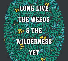 Weeds and Wilderness by Katie Tandlmayer