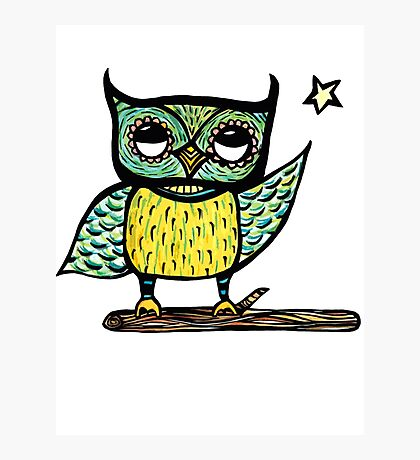 owl 'bright spark' colour Photographic Print