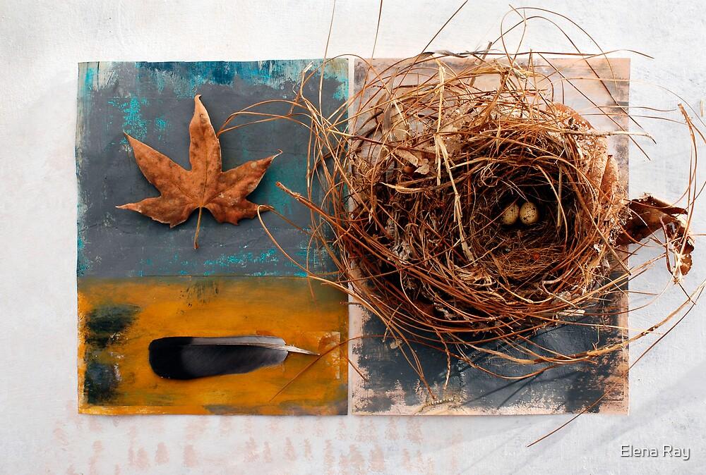 Still Life 5 by Elena Ray