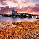 Sunset In Frenchman's Bay by Nancy Richard