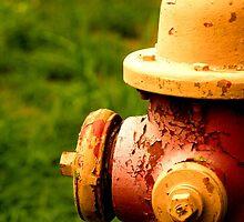 Well Worn Hydrant by KjunSL1