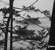 the island by harmonet