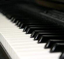 Piano by Henrik Lehnerer