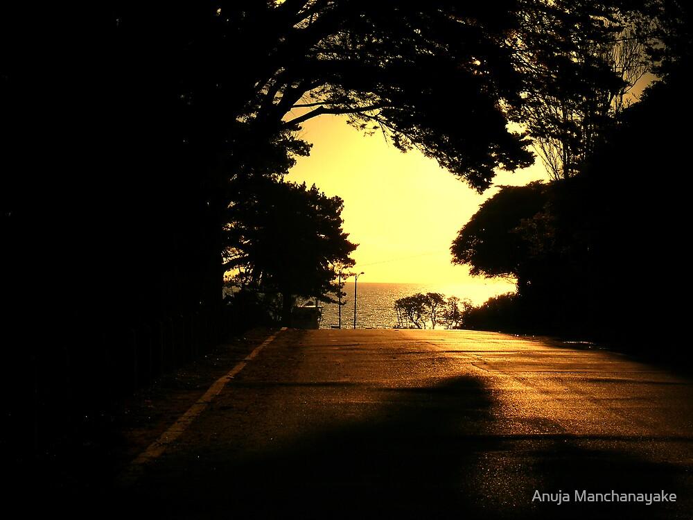 Twilight by Anuja Manchanayake