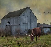 The Longhorn by Robin-Lee