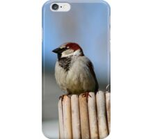 Guarding the Nest iPhone Case/Skin