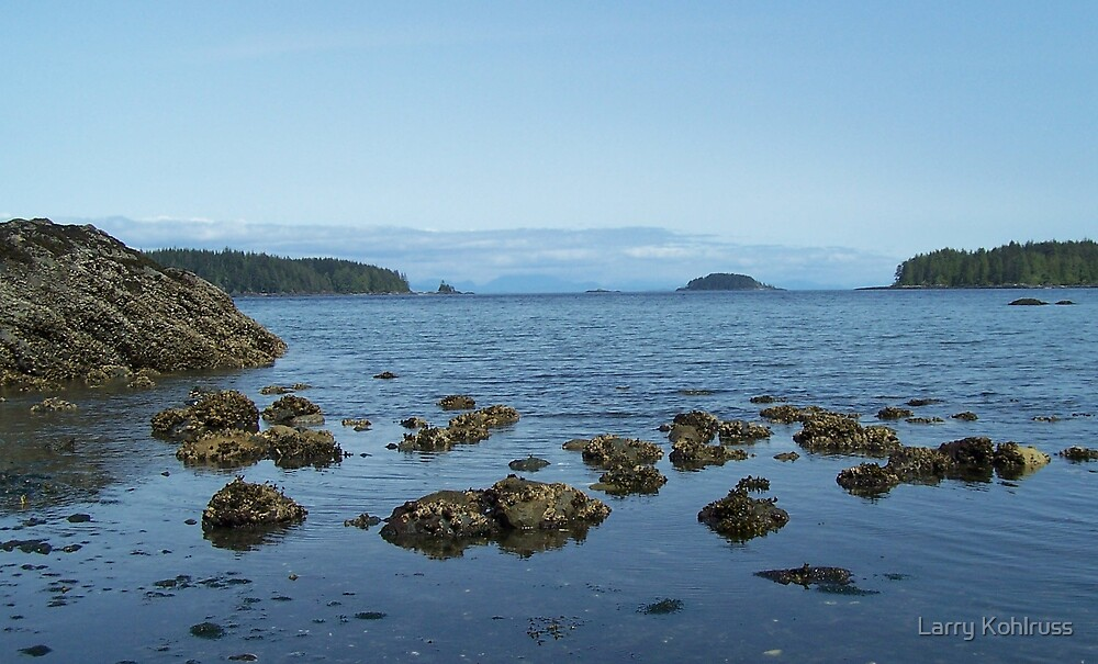 Beaver Cove, Port Hardy BC Canada. 1 by Larry Kohlruss