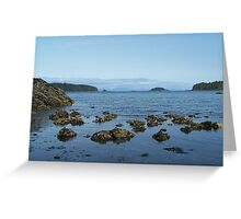Beaver Cove, Port Hardy BC Canada. 1 Greeting Card