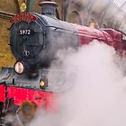 Hogwarts Express by hhndoll