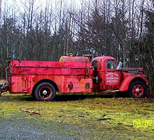 Out of Service by Larry Kohlruss