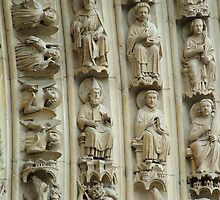 Notre Dame by David McAuley