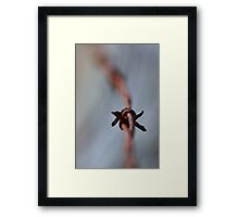 Smoke and Wire Framed Print