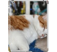Sleepy Boy iPad Case/Skin