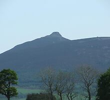 Bennachie  by Jonathan Liddle