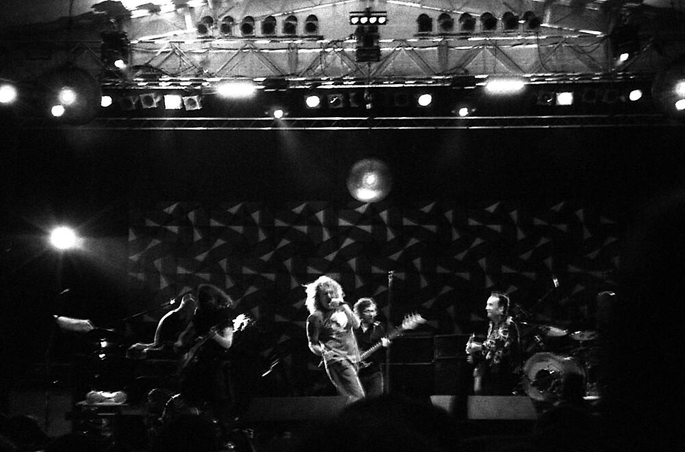 Robert Plant by nikola