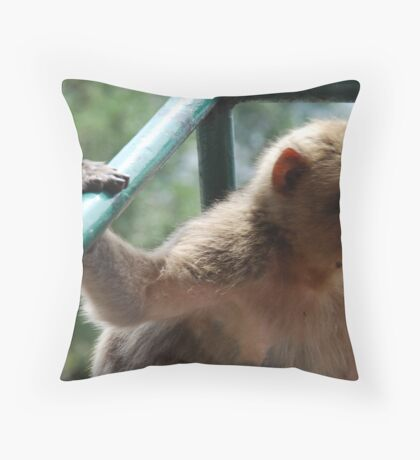 Railing! Throw Pillow