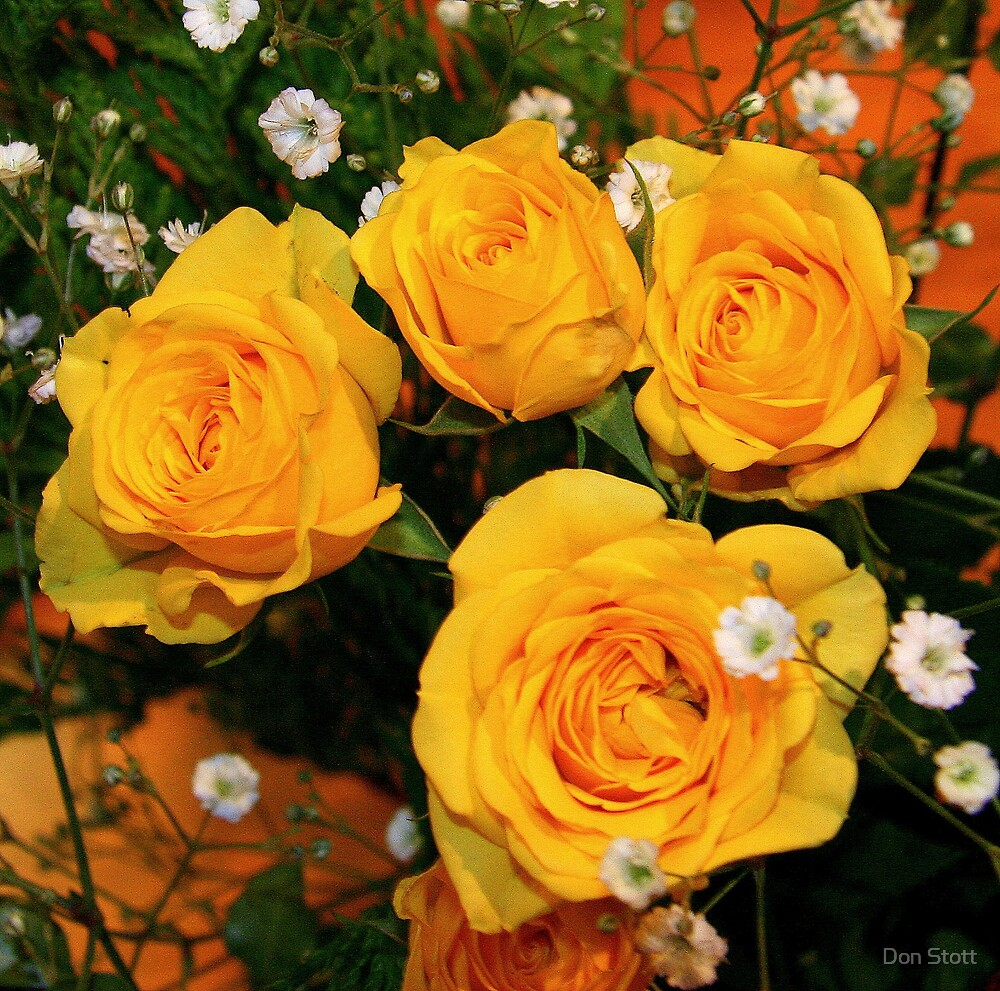 Four Yellow Roses by Don Stott
