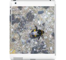 sun bathing bumble iPad Case/Skin