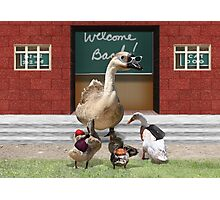 Back to School, my little ducklings! Photographic Print