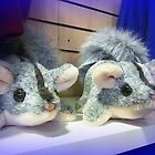 Two Toy  Possums at Creswick Knitting Mills - Vic. Australia by EdsMum