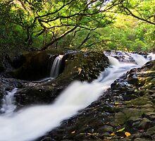 Tears from Above - Maui by Michael Treloar
