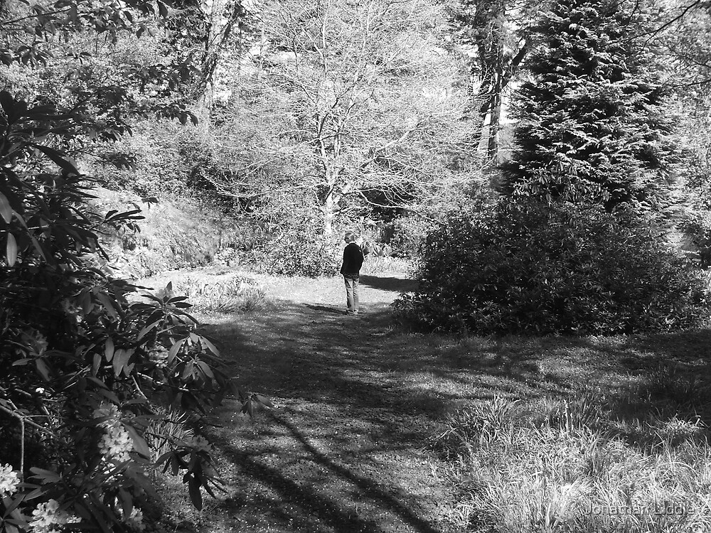 Summer Walking by Jonathan Liddle