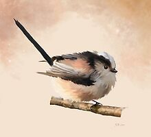 Long Tailed Tit by Bamalam Art and Photography