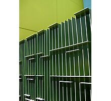 green fence Photographic Print