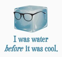 Hipster Ice Cube Was Water Before It Was Cool by TheShirtYurt