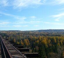 Train trestle in fall  by kaarnold