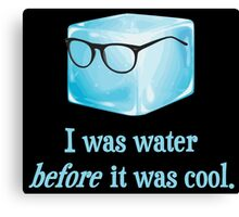 Hipster Ice Cube Was Water Before It Was Cool Canvas Print