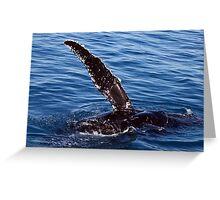 Humpback Whale Greeting Card
