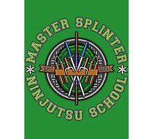 Master Splinter's Ninjutsu School Photographic Print