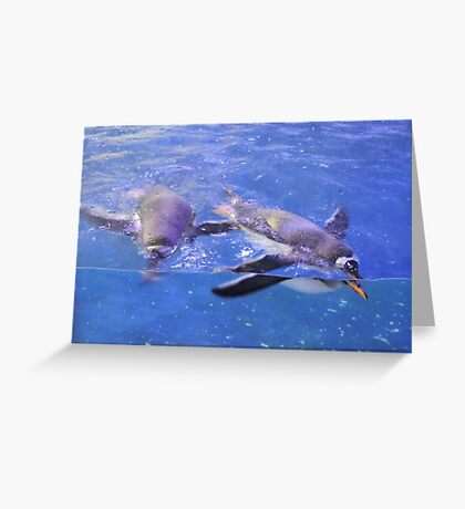Swimming In Cerulean Blue Greeting Card