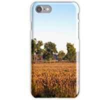Canadian Autumn Trees And Landscape iPhone Case/Skin
