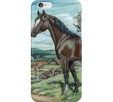 Arabian Horse In Summer Pasture iPhone Case/Skin