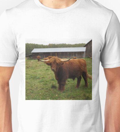 Highland Cows in Sweden Unisex T-Shirt