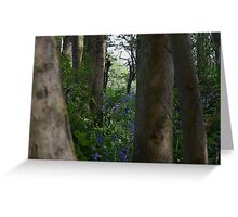 lavender and trees Greeting Card