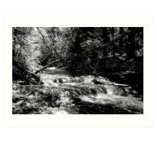 Waterfall 1 Art Print